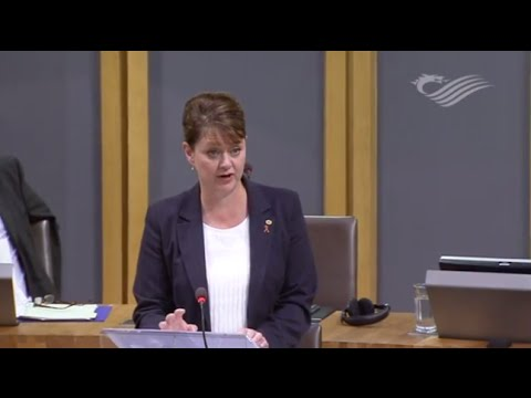 Leanne Wood calls on the Welsh Government to oppose Syria airstrikes