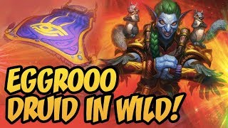 Eggrooo Druid In Wild! | Rise Of Shadows | Hearthstone