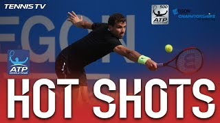 Dimitrov Dives And Dominates Hot Shot In London Queens 2017