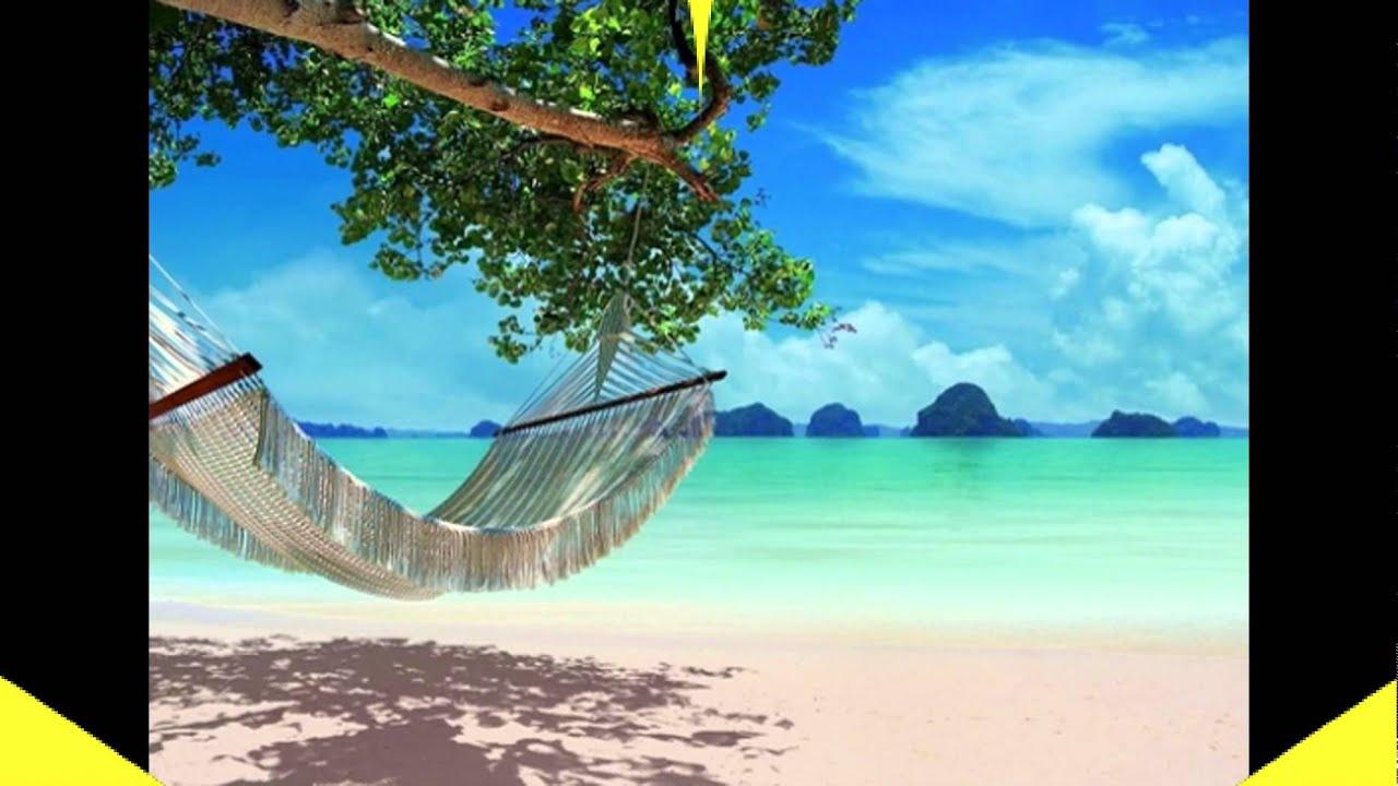 Подбор тура тайланд новосибирска тайланд пи пи туры