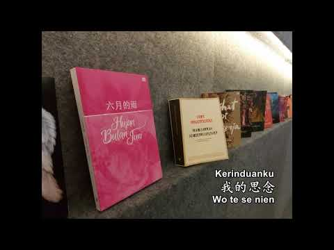 Xin Yu - Li Bihua 心雨 - 李碧華