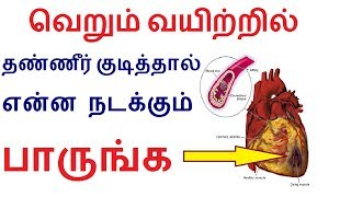 Effect of drinking water at empty stomach before brush in Tamil | Health tips in Tamil