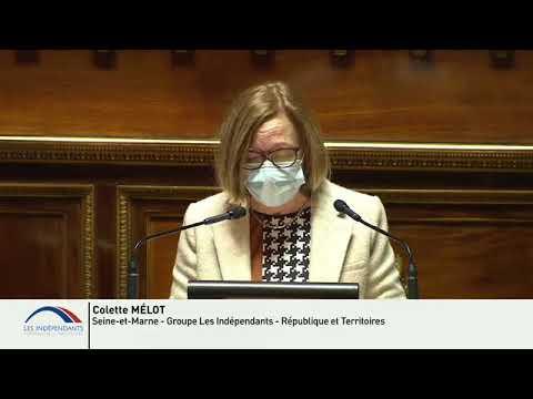 Colette MÉLOT : Débat à la suite du Conseil européen des 10 et 11 décembre