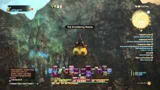 FINAL FANTASY XIV Heavensward: Fat Chocobo flying?!