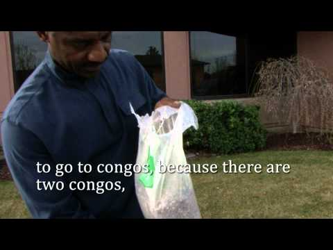 Congo Hydraid BioSand Water Filter Project