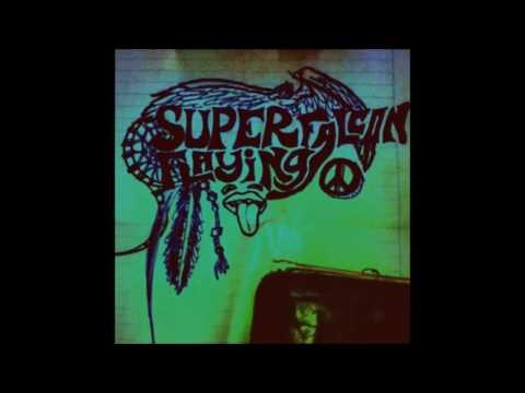 EAGLE SPIRIT-SUPER FALCON FLAYING-