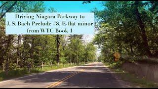 Driving Niagara Parkway