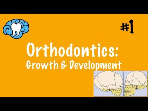 Orthodontics | Growth