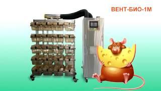 Система индивидуально вентилируемых клеток (ИВК) с блоком АВТЕХ ВЕНТ-БИО-1М