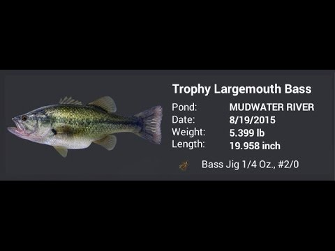 Fishing Planet - HOW TO USE BASS JIG from YouTube · Duration:  4 minutes 37 seconds