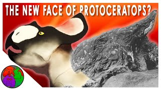 The New Face of Protoceratops?