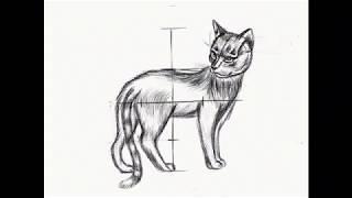 Кот Как нарисовать поэтапно Кота  Рисование карандашом поэтапно #howtodraw Step by step drawing