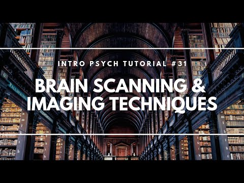 Brain Scanning and Imaging Techniques (Intro Psych Tutorial #31)