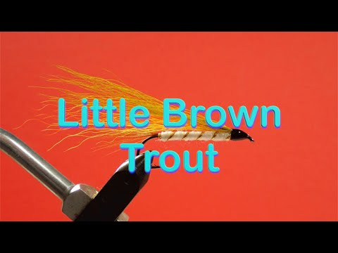 The Beginner's Fly Tying Series: Easy Streamer Series - The Little Brown Trout