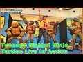 Teenage Mutant Ninja Turtles Live in Action Show