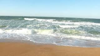 Крым 2019, Азовское море,  поездка по берегу Татарской бухты Казантипского залива. Crimea Russia.