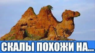Чудеса природы Скалы похожие на животных Удивительные места мира Достопримечательности мира