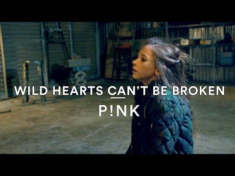 P!nk - Wild Hearts Can't Be Broken | Mitchel Federan Choreography | Dance Stories