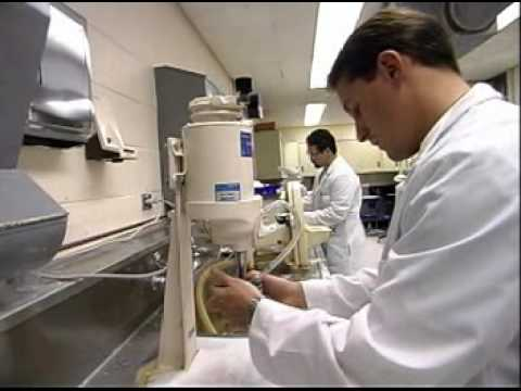 Dental Laboratory Technicians