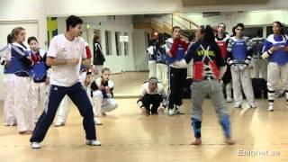 National Taekwondo Team  of Sweden training seminar at Enighet Sportcenter, Malmo, Sweden