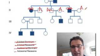 Repeat youtube video Pedigree Analysis 1: How to solve a genetic pedigree No. 1