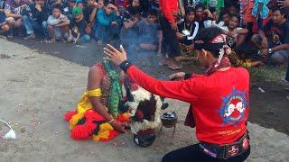 Panggah Kendel== Adegan Bantengan Wijoyo Putro Original Live Pulosari Kalianyar