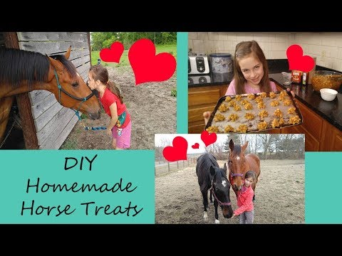 Homemade Horse Treats - DIY Homemade Horse Treat Recipe - Easy Horse Treat Recipe