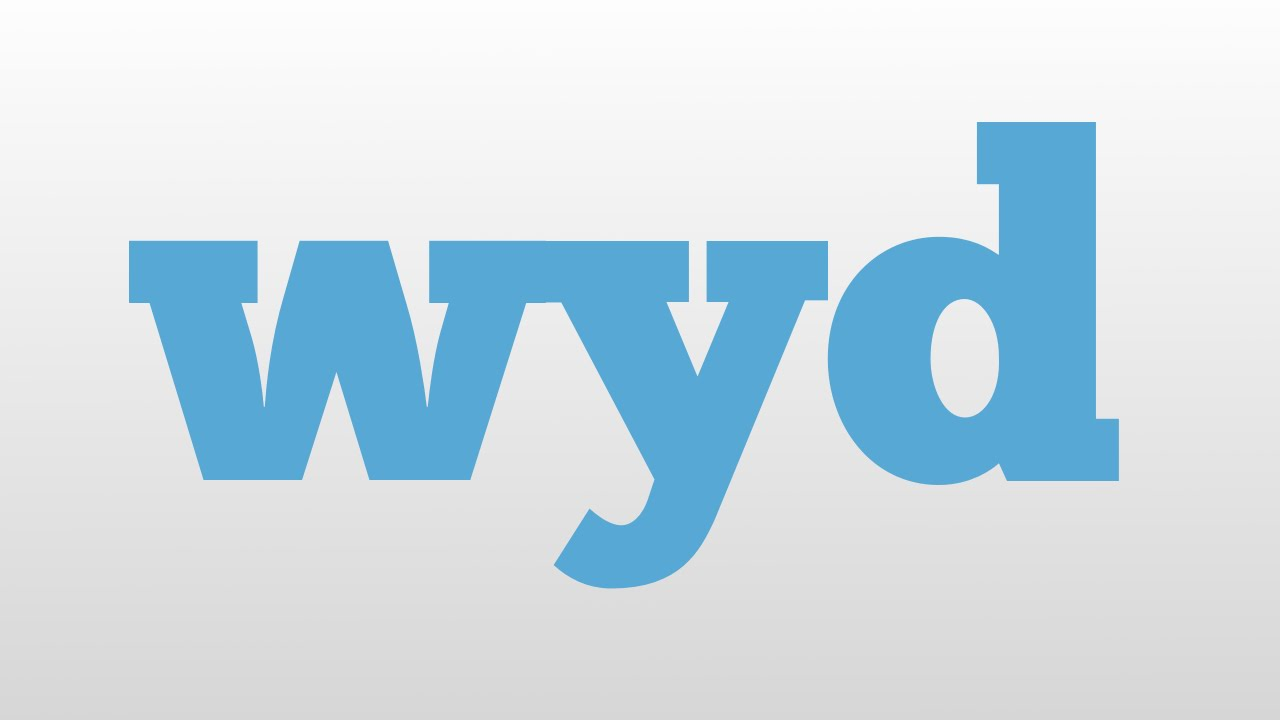 What is wyd in text language