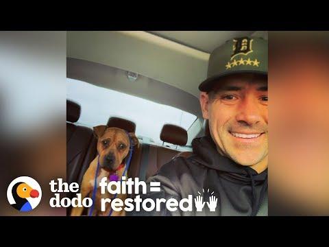 Cop Rescues Pit Bull In -20 Degree Windchill   The Dodo Faith = Restored