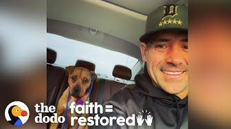 Cop Rescues Pit Bull In -20 Degree Windchill | The Dodo Faith = Restored