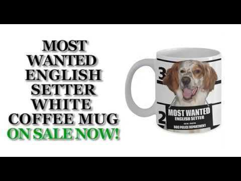 Most Wanted English Setter – 11oz White Ceramic Coffee Mug