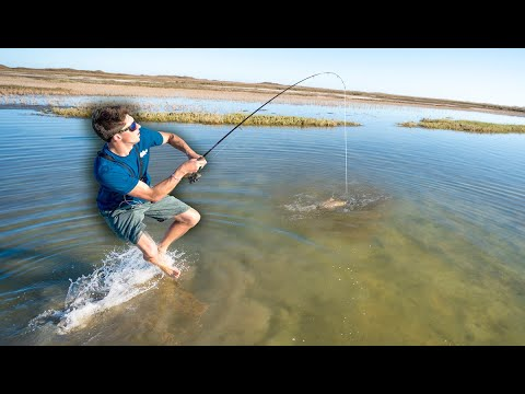 Stalking AGGRESSIVE Redfish On CLEARWATER Flats (Part 1)