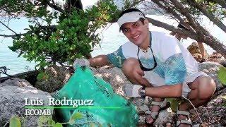 Social Entrepreneurs Celebrated in Miami, Florida - Sustainatopia Revolution Heroes of 2012