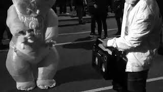 charles daft pug baby halloween parade nyc 2017