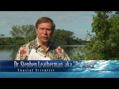 Welcome To Charlotte County With Dr. Beach