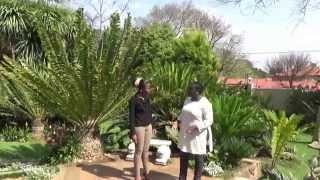 FBTA living - Jolly Mokorosi - Johannesburg & crime