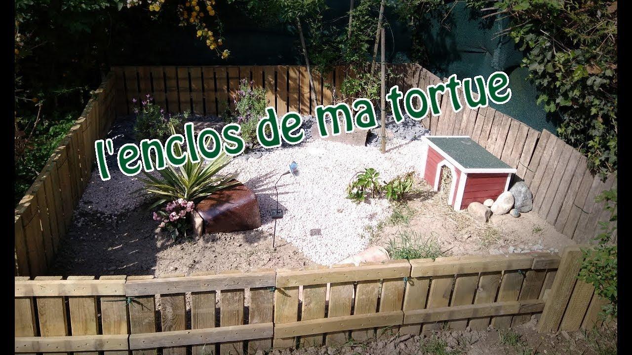 enclos tortue