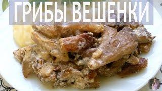 видео Как приготовить грибы вешенки