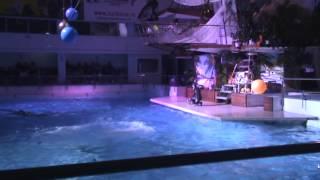Челнинский дельфинарий 11.10.2014(, 2014-10-11T17:52:11.000Z)