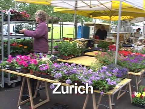 Zurich AT04