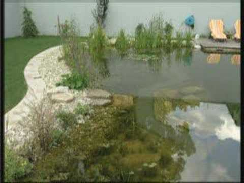 Biotop Swimming Teich Natural Pool Youtube