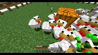 Minecraft tavuk besleme , tavuk çiftliği kurma