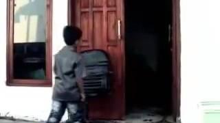 Lagu minta kawin ( Madura version)