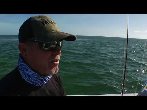 Sharks of Big Pine Key | Sportsman's Adventures 2017 - Season 23, Episode 11
