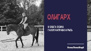 Ольга Осина на лошади Олигарх. Галоп направо и рысь