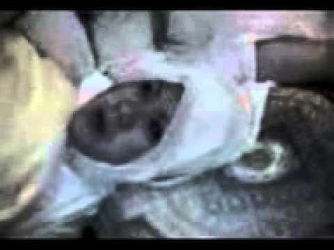 Kuasa allah!! Idrus Kuntilanak tertangkap dan masuk Islam mengerikan