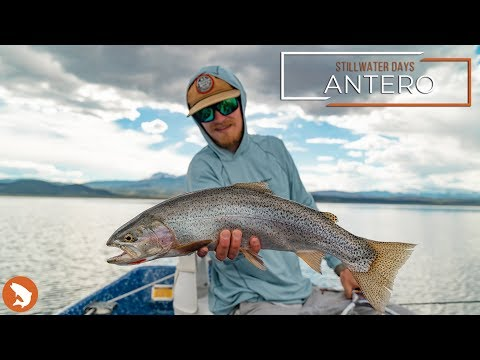 Stillwater Days - Antero - Fly Fishing Colorado Stillwaters
