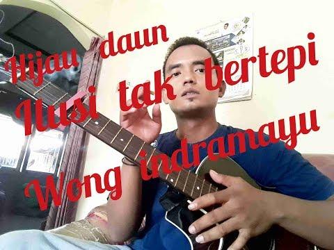 Hijau Daun || Ilusi Tak Bertepi || Cover Wong Indramayu