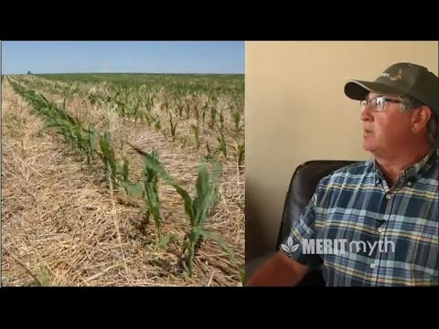 Ralph Holzwarth - Building Your Organic Base with Residue