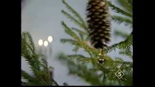 видео Музей-усадьба Аксакова